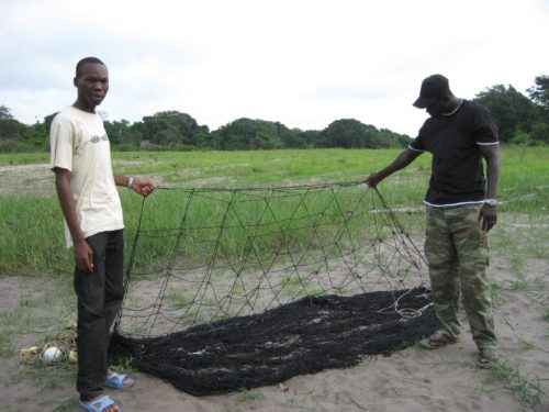Two Gabonese biologists with a manatee net found in a village.